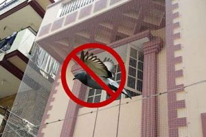 Pigeon Nets Dealers in Bangalore