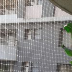 anti bird nets in bangalore